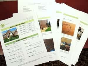 mold testing & inspection report