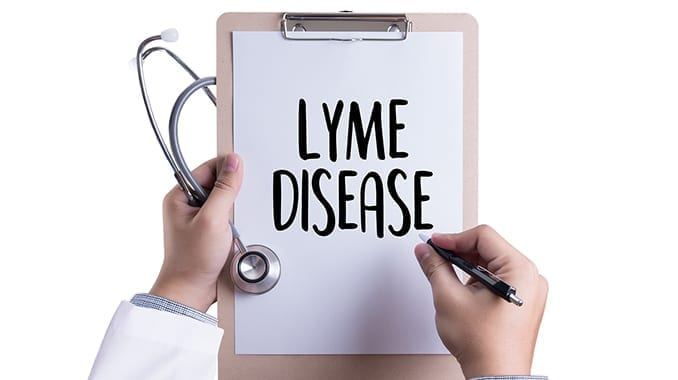 Lyme disease and Mold Illness