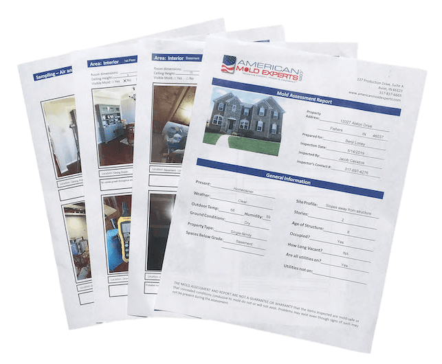 mold assessment reports