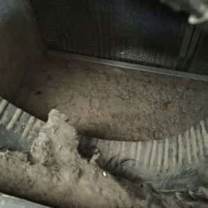 Mold in crawlspace removal indianapolis