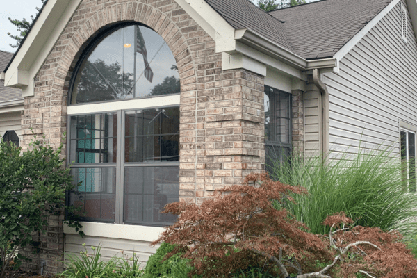 Old Double Hung Windows with Half Round Above